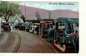 Madeira taxi sleds