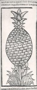 oviedopineapple